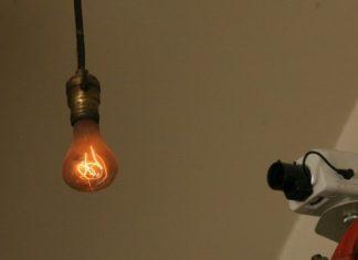 110 year old bulb