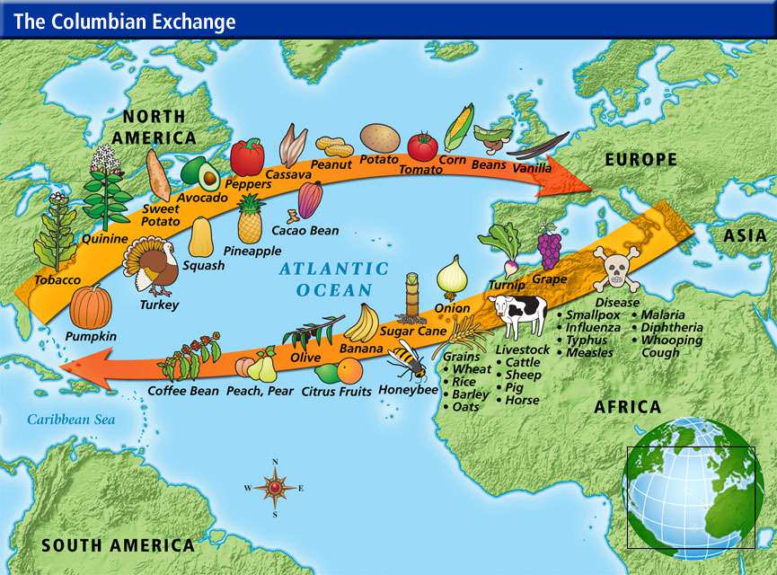 Columbian Exchange Chart