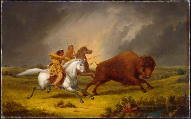 Native American hunting a bison