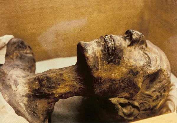 Mummy of Ramses II