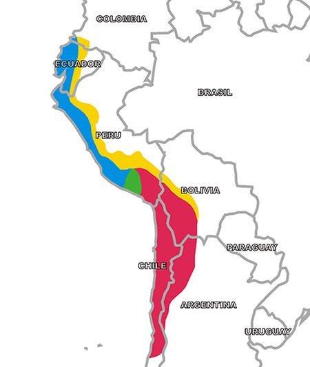 10 Major Achievements of The Ancient Inca Civilization ... on mali empire trade route map, triangular trade route map, anasazi trade route map, roman trade route map, mongol trade route map, olmec trade route map, north american trade route map, byzantine trade route map, huron trade route map, silk road trade route map, greek trade route map, iroquois trade route map, egypt trade route map, incense trade route map, ghana trade route map, egyptian trade route map, south american trade route map, mesoamerican trade route on map, india trade route map, african trade route map,