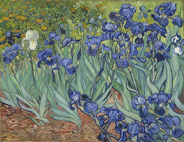 Irises (1889)