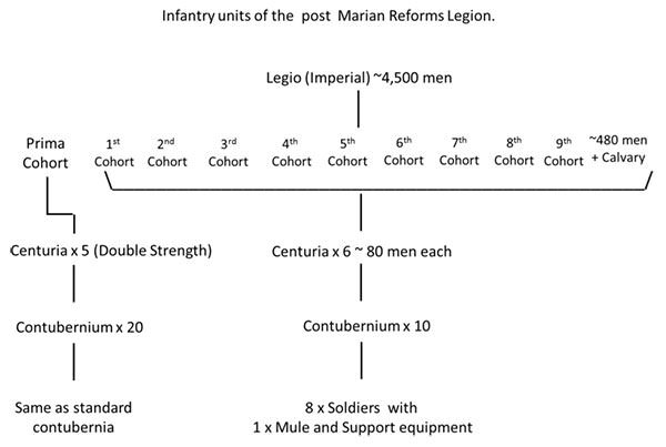 Organization of Roman legion